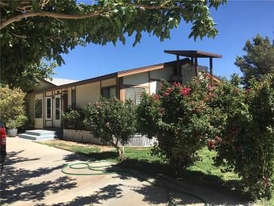 Rosamond Single Family Home For Sale: 7834 Dinkey Avenue