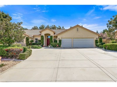 Palmdale Single Family Home For Sale: 6036 Devonshire Drive