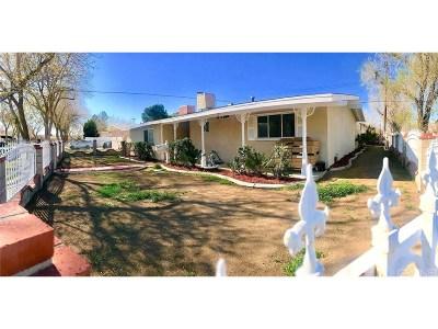Lancaster Single Family Home For Sale: 1103 West Holguin Street