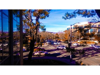 Woodland Hills Condo/Townhouse For Sale: 21400 Burbank Boulevard #224