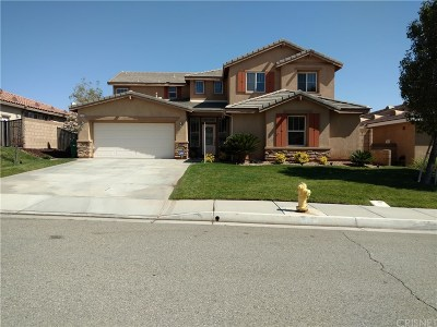 Palmdale Single Family Home For Sale: 739 Celtic Drive