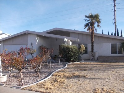 Lancaster Single Family Home For Sale: 2084 Spice Street