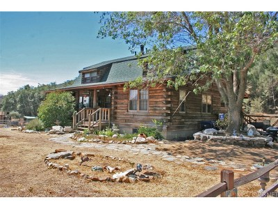 Lake Hughes Single Family Home For Sale: 19450 Pine Canyon Road