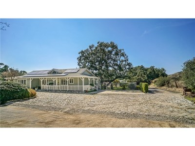 Newhall Single Family Home For Sale: 24759 Choke Cherry Lane