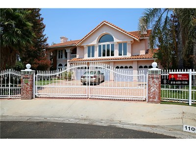 Chatsworth Single Family Home For Sale: 11069 Baile Avenue