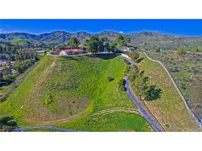 Castaic Single Family Home For Sale: 30403 Byfield Road