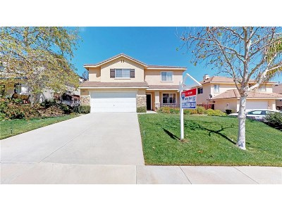 Castaic Single Family Home For Sale: 32644 The Old Road
