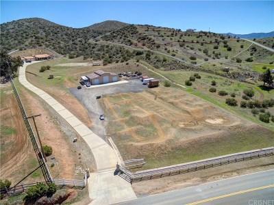 Acton Single Family Home For Sale: 6938 Escondido Canyon Road