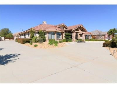 Palmdale Single Family Home For Sale: 41663 Misha Lane