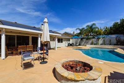 Agoura Hills Single Family Home For Sale: 30624 Janlor Drive