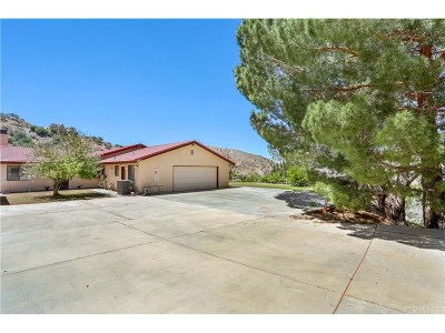 Acton Single Family Home For Sale: 2904 Golden Spur Road
