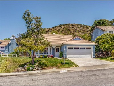 Castaic Single Family Home For Sale: 31230 Quail Valley Road