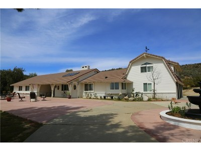 Agua Dulce Single Family Home For Sale: 10439 Sierra Highway