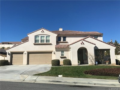 Palmdale Single Family Home For Sale: 41645 Chardonnay Avenue