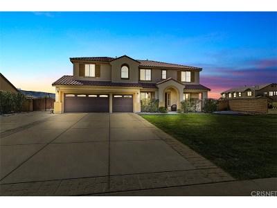 Lancaster Single Family Home For Sale: 41529 Alexo Drive