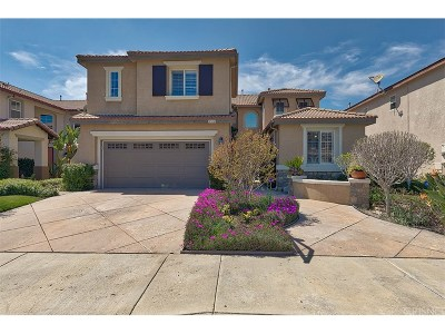 Castaic Single Family Home For Sale: 30469 Mallorca Place