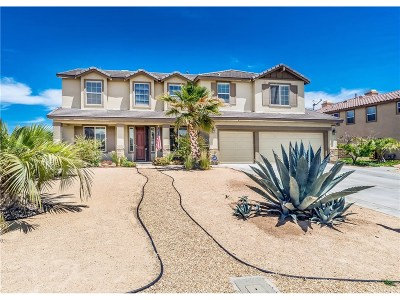 Lancaster Single Family Home For Sale: 3661 Paddock Way