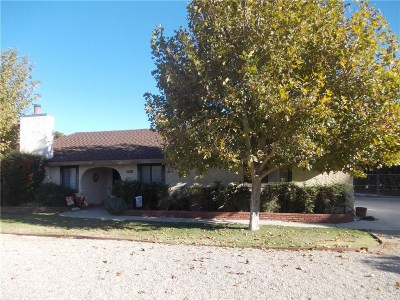 Palmdale Single Family Home For Sale: 743 West Avenue R12