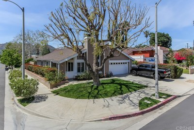 Chatsworth Single Family Home For Sale: 10041 Owensmouth Avenue