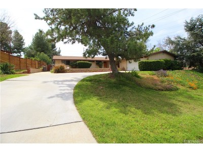 Saugus Single Family Home For Sale: 22638 Decoro Drive