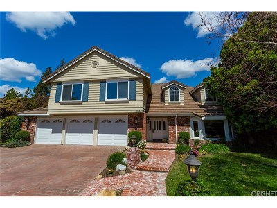 Agoura Hills Single Family Home For Sale: 30303 Rainbow View Court