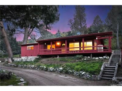 Lake Hughes Single Family Home For Sale: 20872 Pine Canyon Road