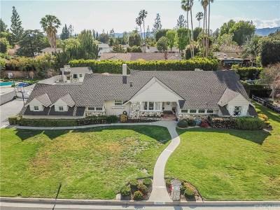 Northridge Single Family Home For Sale: 10113 Calvin Avenue