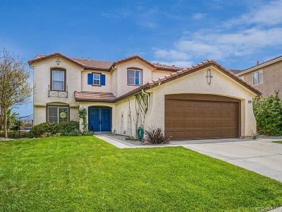 Castaic Single Family Home For Sale: 29972 Granger Place