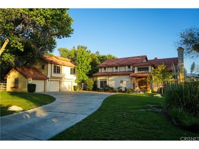 Acton Single Family Home For Sale: 1830 Shadow Canyon Road