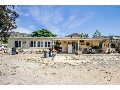 Sylmar Single Family Home For Sale: 13820 Olive View Drive