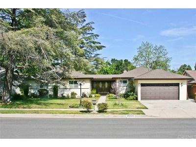 Chatsworth Single Family Home For Sale: 10000 Rudnick Avenue