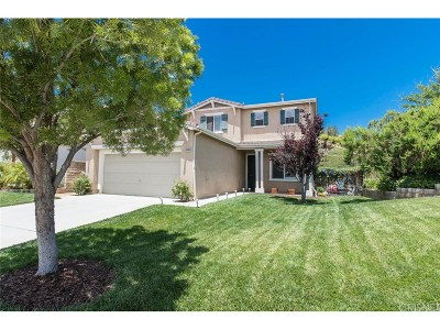 Castaic Single Family Home For Sale: 28003 Gibraltar Lane