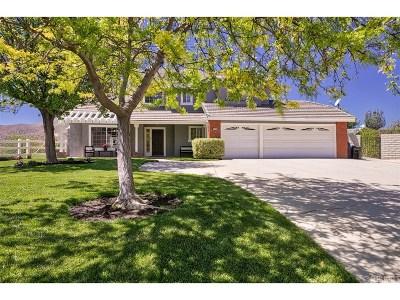 Acton Single Family Home For Sale: 32705 Dorama Avenue