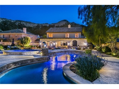 Castaic Single Family Home For Sale: 31210 Countryside Lane