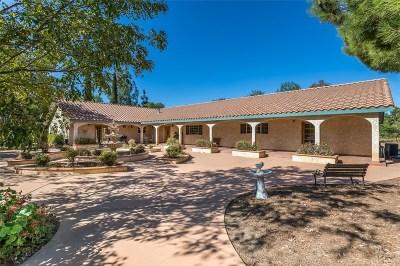 Agua Dulce Single Family Home For Sale: 35356 Sierra Vista Drive