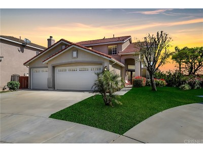 Canyon Country Single Family Home For Sale: 19603 Sunrise Summit Drive