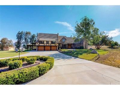 Agua Dulce Single Family Home For Sale: 32630 Agua Dulce Canyon Road
