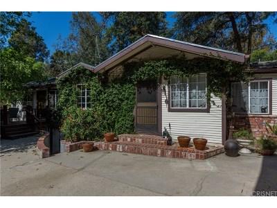 Shadow Hills Single Family Home For Sale: 10247 Sunland Boulevard