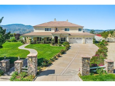 Acton Single Family Home For Sale: 34421 Katrina Street