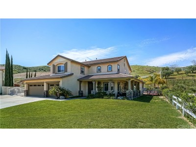 Castaic Single Family Home For Sale: 30015 Valley Glen Street