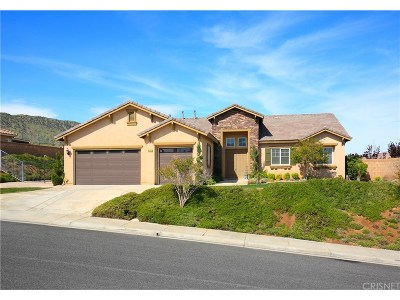 Palmdale Single Family Home For Sale: 41707 Zinfandel Drive