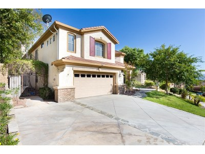 Saugus Single Family Home For Sale: 28248 Infinity Circle