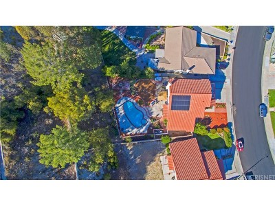 Canyon Country Single Family Home For Sale: 17017 Canvas Street