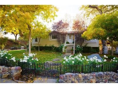 Agoura Hills Single Family Home For Sale: 2581 Kanan Road