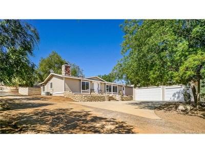 Acton Single Family Home For Sale: 8246 Escondido Canyon Road