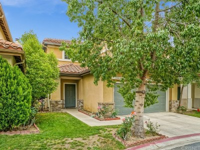 Canyon Country Single Family Home For Sale: 18802 Electra Court