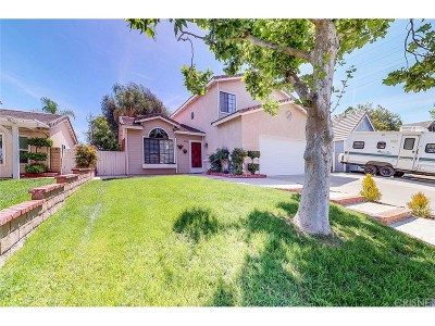 Castaic Single Family Home For Sale: 29126 Quincy Street