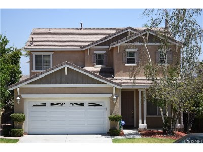 Castaic Single Family Home For Sale: 29968 North Cambridge Avenue North