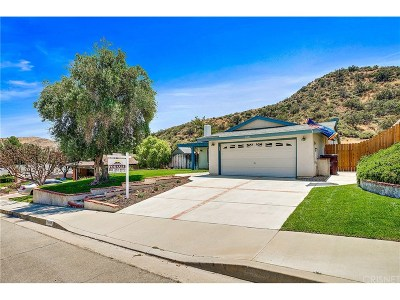 Canyon Country Single Family Home For Sale: 14666 Hydrangea Way