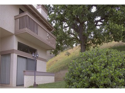 Calabasas Rental For Rent: 26008 Alizia Canyon Drive #F